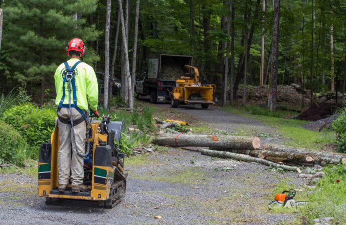 Emergency Tree Removal-Parkland FL Tree Trimming and Stump Grinding Services-We Offer Tree Trimming Services, Tree Removal, Tree Pruning, Tree Cutting, Residential and Commercial Tree Trimming Services, Storm Damage, Emergency Tree Removal, Land Clearing, Tree Companies, Tree Care Service, Stump Grinding, and we're the Best Tree Trimming Company Near You Guaranteed!